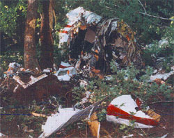 Plane Wreck - If you have post traumatic stress due to a plane crash, contact us in Bloomfield Hills, Michigan, and receive information for legal advice and support groups.